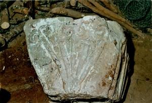 Bedos chapiteau